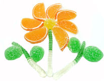 创造性的橘子果酱果冻甜食物花形式 库存照片