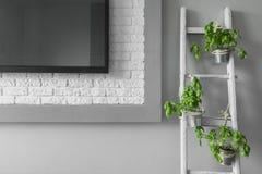 创造性的电视墙壁装饰想法 图库摄影