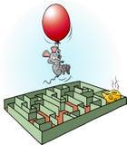 创造性的老鼠发现容易的方法对乳酪 免版税图库摄影