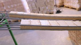 创造燃料冰砖的过程,压缩的锯木屑燃料的生产 股票视频