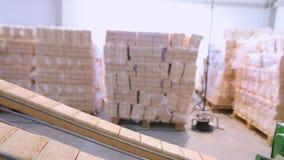 创造燃料冰砖的过程,压缩的锯木屑燃料的生产 股票录像