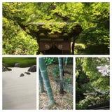 初夏在镰仓,日本 库存照片