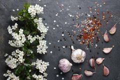 初夏白花开花用桃红色大蒜和喜马拉雅岩盐用胡椒 库存照片