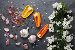初夏白花开花用桃红色大蒜和喜马拉雅岩盐 免版税库存照片