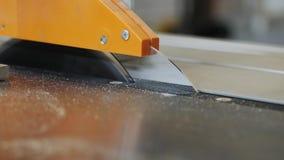 删去粗纸板板料的木匠 影视素材