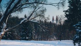 利卡河一座城堡在森林里 免版税库存图片