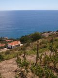 利古里亚沿海海景在明亮的天 库存图片