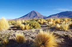 利坎卡武尔火山和Juriques在阿塔卡马沙漠,智利 库存图片