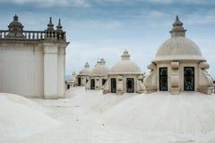 利昂大教堂屋顶 库存照片