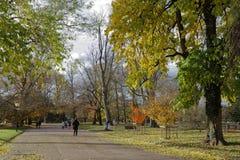 利昂,法国, 2016年11月19日:秋天在Parc de la太特d'Or 免版税库存照片