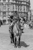 利沃夫州,乌克兰- 2018年5月:骑士坐在狂欢节服装的一匹马在城市的中心乘坐在游行 免版税库存图片