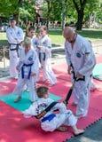 利沃夫州,乌克兰- 2015年7月:Yarych街道费斯特2015年 户外示范锻炼在公园孩子和他们的老师taekwon 库存照片