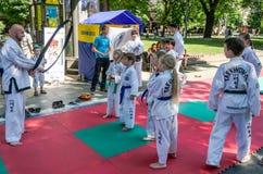 利沃夫州,乌克兰- 2015年7月:Yarych街道费斯特2015年 户外示范锻炼在公园孩子和他们的老师taekwon 免版税库存照片
