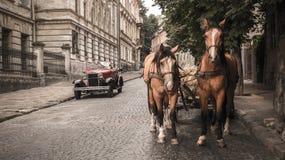 利沃夫州,乌克兰- 2017年6月27日:射击两匹马和苏联汽车30-xx岁月加沙 免版税图库摄影