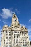 利物浦市中心-三雍容,在Liverpool& x27的大厦; s w 免版税库存照片