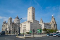 利物浦市, Liverbird大厦,英国 免版税库存照片
