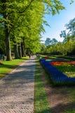 利瑟,荷兰- 2008年4月4日:著名Keuken春天视图  库存照片