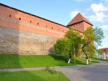 利达城堡塔和墙壁  免版税库存照片