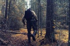 别动队员在秋天森林里 库存图片