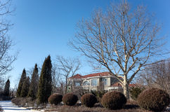 别墅在冬天 图库摄影
