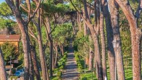 别墅多利亚Pamphili公园在阿尔巴诺拉齐亚莱timelapse,意大利美丽的镇  影视素材