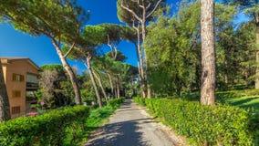 别墅多利亚Pamphili公园在阿尔巴诺拉齐亚莱timelapse hyperlapse,意大利美丽的镇  股票录像