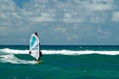 刮风的天气的风帆冲浪者在毛伊岛 免版税图库摄影