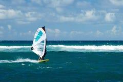 刮风的天气的风帆冲浪者在毛伊岛 免版税库存照片