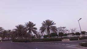 到回教族长扎耶德在阿布扎比股票英尺长度录影的Grand Mosque的汽车旅行 影视素材