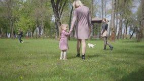 到处乱跑用藏品手的母亲和小女儿在惊人的绿色公园 使用在公园的妇女和孩子 影视素材