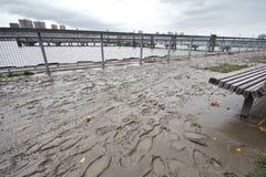 到处泥在飓风桑迪,曼哈顿以后 库存照片