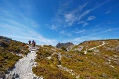 到达一个土坎的山顶的与摇篮山的远足者在ba 免版税库存图片