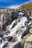 到Trolltunga的夏天旅行,拖钓` s舌头,在Odda Ringedalsvatnet湖,挪威 免版税库存照片