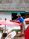 制作泰国传统Borsang伞的夫人在清迈 库存图片
