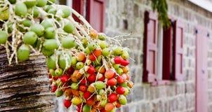 制作绿色老桔子的浆果 免版税库存图片