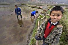 制服的亚裔男孩在被充斥的米领域旁边站立 免版税图库摄影
