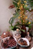 制表与杉木锥体的显示装饰在桌上 免版税图库摄影