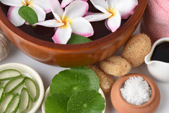 洗刷与盐混合芦荟维拉、亚洲草本Pennywort、的老虎和蜂蜜的温泉 免版税库存照片
