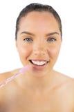 刷她的牙的愉快的妇女 库存照片