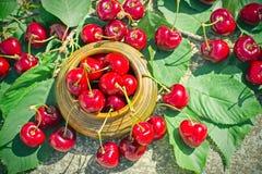刷新和有机水多的莓果-,在土气碗的甜樱桃 免版税图库摄影