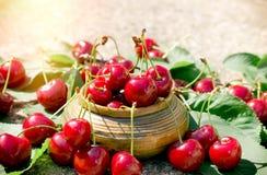 刷新和水多的果子-有机樱桃 免版税库存照片