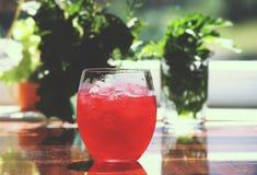 刷新的冷的桃红色鸡尾酒 库存图片