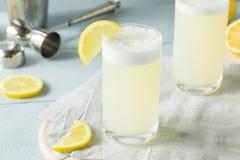 刷新的冷的蛋杜松子酒嘶嘶响 免版税图库摄影