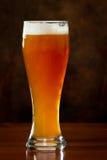 刷新的啤酒 库存图片