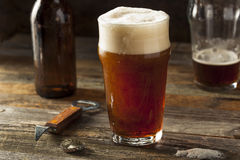 刷新的布朗强麦酒啤酒 免版税库存图片