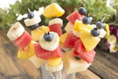 刷新的果子串-果子快餐 免版税库存图片