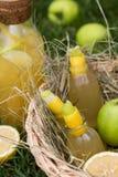 刷新的柠檬水用苹果和柠檬在野餐篮子 冷的夏天饮料在庭院里 库存照片