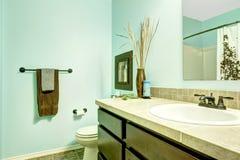 刷新的浅兰的卫生间 库存照片