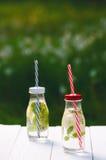 刷新的自创调味的水用柠檬、石灰和盖醇在一张白色桌上在庭院里 新的成人 贝蒂 库存照片
