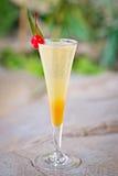 刷新的酒精热带鸡尾酒, Belini 免版税库存图片